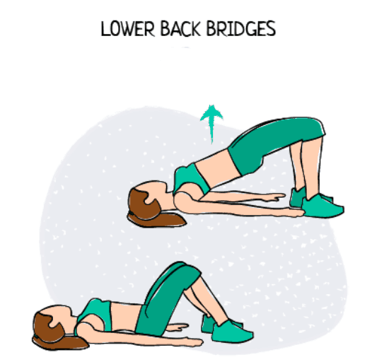 Lower Back Bridges Illustration