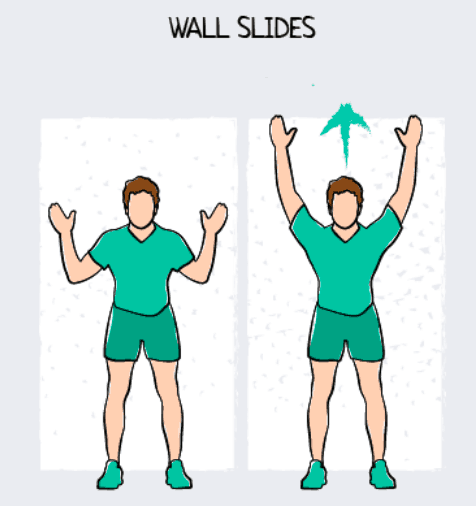 Wall Slides Exercise Illustration
